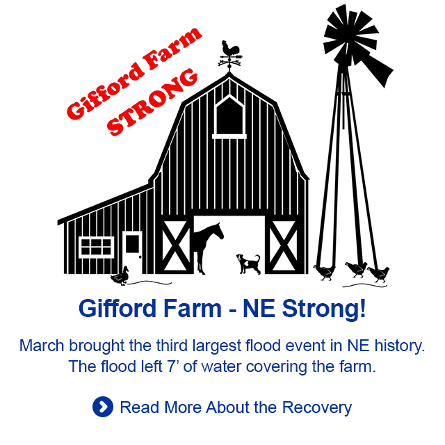 We remain NE Strong as well as Gifford Farm Strong!